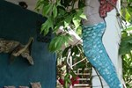 Апартаменты Art House Las Sirenas