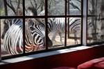 Апартаменты Kudu Lodge