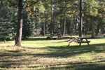 Отель Springbrook Resort Campground RV