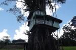 Отель Lupe Sina Treesort