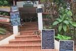 Отель Hotel Iguanito