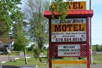 Отель The Silver Birch Motel