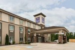 Отель Sleep Inn & Suites Moundsville