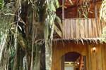 Апартаменты Topos Tree House