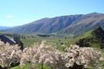Мини-отель Mt Rosa Lodge