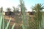 Отель Sahara du Sud