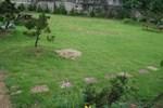 Pinetree Garden
