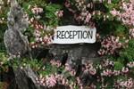 Отель Tanglewood Gardens Rainforest Retreat