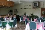 Гостевой дом Palm Tree Guest House