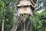 Гостевой дом Tanna Lava View Bungalows