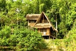 Отель Cotococha Amazon Lodge - Napo River Lodge