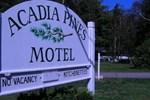 Отель Acadia Pines Motel
