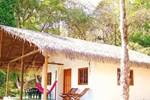 Отель Cabañas Coco Mango