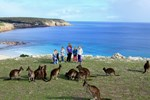 Вилла Waves & Wildlife Cottages Kangaroo Island