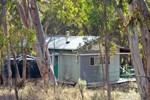 Отель Mimirosa Bush Cabin