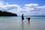 Отель Bruny Island Escapes and Hotel Bruny