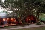Отель Kosi Forest Lodge