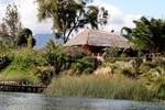 Отель Hotel y Restaurante Bambu