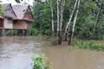 Отель Tahuampa Lodge Amazon Expeditions
