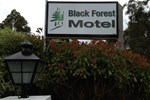 Отель Black Forest Motel