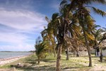 Отель Kilwa Beach Lodge