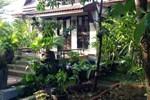 Tropical Palm Villa
