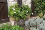 Гостевой дом Le Clos Joli