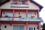 Гостевой дом Pensiunea Poalele Gutinului