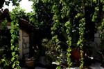 Villa Residence Burgus-Antium