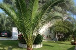 Апартаменты Villa Mare Studios Lefkada
