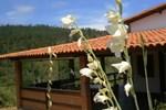 Отель Cafe Club Hotel Fazenda