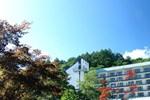 Отель Tateshina Grand Hotel Takinoyu