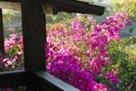 Гостевой дом Pousada Flor de Lotus