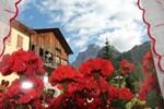 Апартаменты Dolomites Holidays