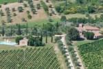 Villa in Castellina In Chianti XII