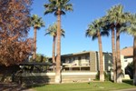 Mid Century Condo in Old Town Scottsdale