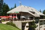 Отель Hotel Cartusia