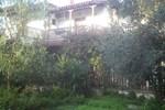 House Katia