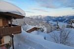 Апартаменты Alpin-Ferienwohnungen Hochzillertal