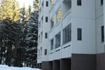 Апартаменты Joutjärvi Apartment