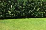 Quartello Garden