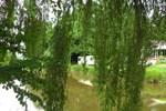 Отель Acorn Lake Fishing and Caravan's
