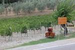 Agriturismo Monterotondo