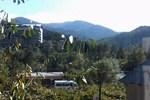 Гостиница Borjomi Likani Homestay