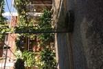 Гостевой дом Орхидея