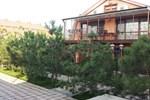 Villa Sosnovy Bor