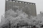 Гостиница Университетская