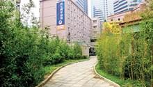 Zhaolong International Youth Hostel-Beijing