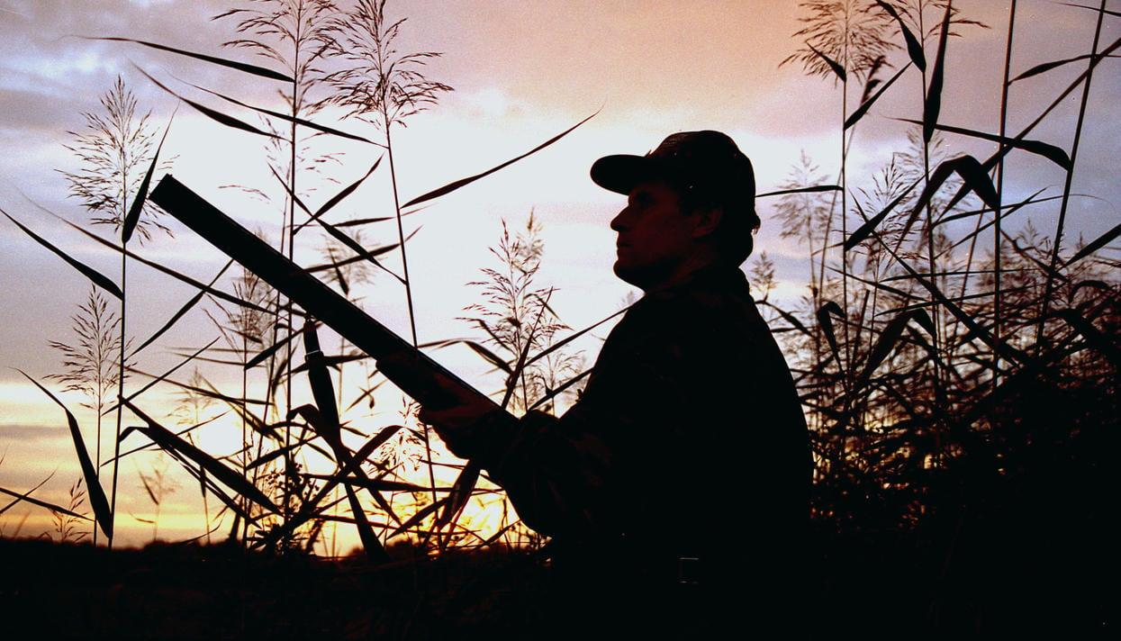 В Карелии пройдет охотничий фестиваль