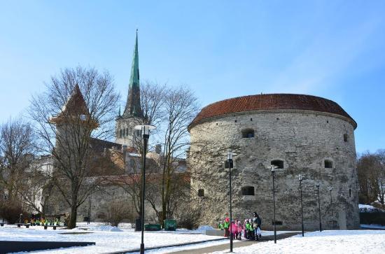 """Башня """"Толстая Маргарита"""" в Таллине закрылась на полтора года"""